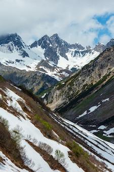 夏のアルプスの山の景色(ワース、フォアアールベルク、オーストリア)。