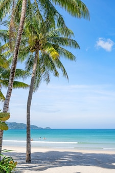 하얀 모래 해변에 코코넛 야 자 나무의 여름 배경 풍경 자연보기 푸른 물과 맑고 푸른 하늘 푸 켓 섬 태국에서 바다 위로 낭만적 인 바다 베이.