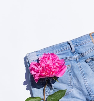 Summer background pink peony in a jeans pocket
