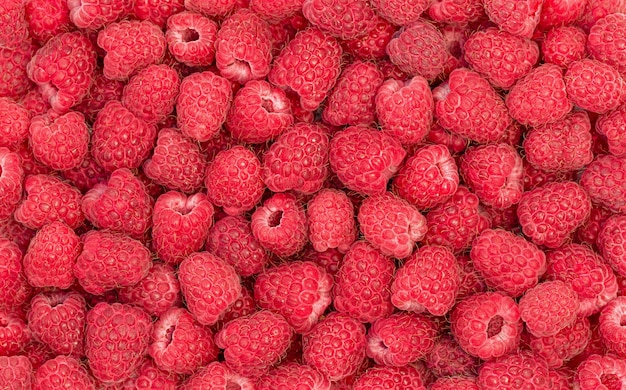 Summer background of red ripe raspberry  top view