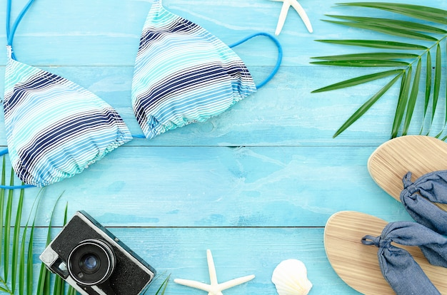 Summer background with palm, starfish, shells and retro camera.