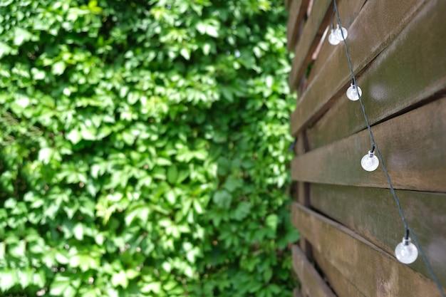 夏の背景。つる植物のある木製テラス。と太陽電池式電球。