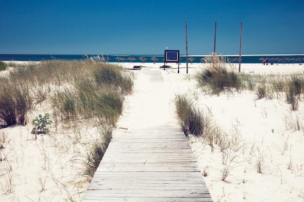 Летний пляж фон