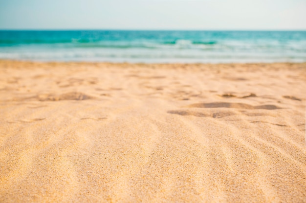 Летняя пляжная композиция для фона