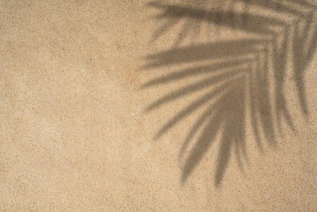 熱帯のヤシと夏のビーチの日のシーンは砂の背景に影を残します最小限の日光熱帯