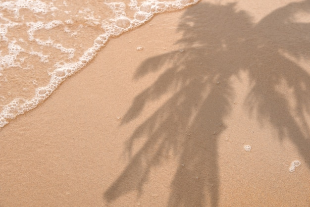 Summer beach day scene with tropical palm leaves shadow on sand background minimal sunlight tropica