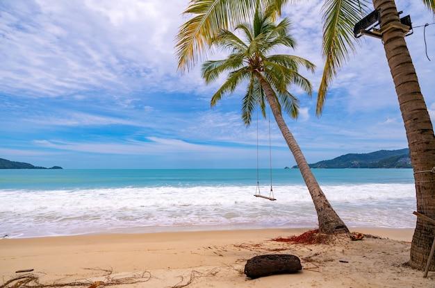 Летний пляж с пальмами вокруг на пляже патонг, остров пхукет, таиланд