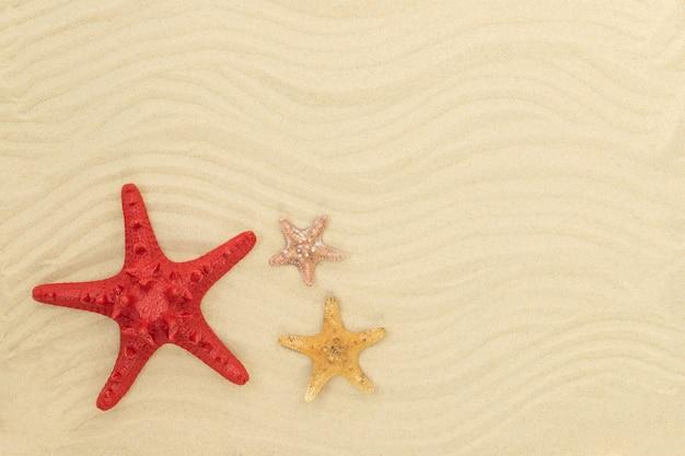 Летний пляж с песком и морскими звездами
