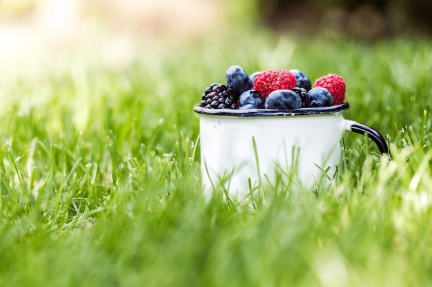 緑の草の背景に夏のベリーの果実。健康的な健康食品