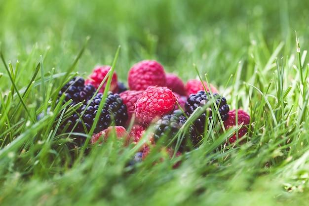 緑の草の背景に夏のベリーの果実。
