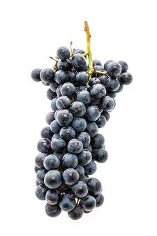 Summer black blue sweet ripe