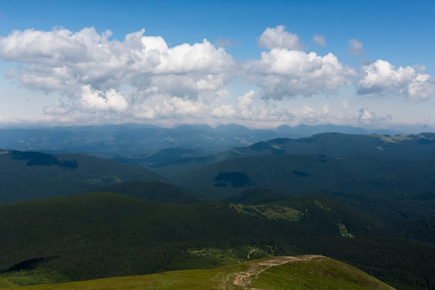 Summer in carpathian mountains
