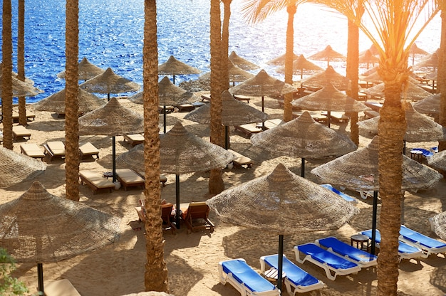 Summer chaise lounges under an umbrella on sandy sea beach in hotel