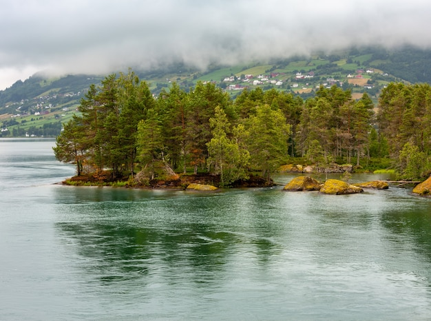 Summer cloudy fjord landscape with fir forest on stony shore, norway