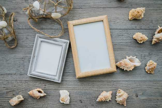 Summer composition with frames and seashells