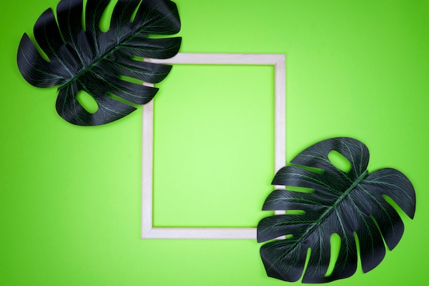 Summer composition with monstera leaves and frame tropical leaves, empty photo frame on pastel green background.