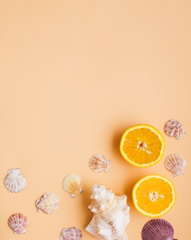 Summer composition with shells and oranges