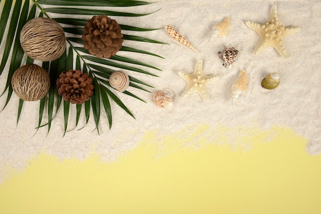 Summer concept and accessories (shells, starfish, coconut leaf) with sandy beach