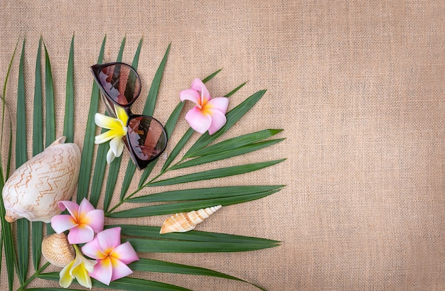 Summer concept flat lay. palm tree leaf with seashells and glasses