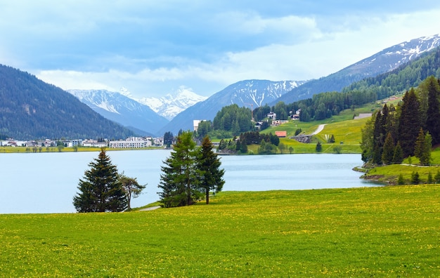 Summer country landscape with davos lake and dandelion meadow (switzerland).