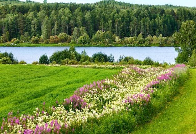 Летний деревенский пейзаж с цветами на поле и реке