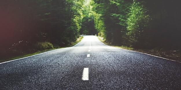 横に木がある夏の田舎道