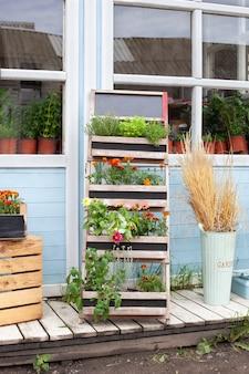 녹색 식물 허브와 꽃 상자에 집의 여름 장식 베란다 집 현관