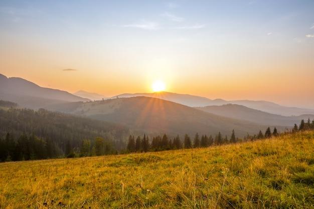 숲이 우거진 산에서 여름 저녁. 잔디 숲 사이의 빈터. 태양은 봉우리 너머 구름없는 하늘에진다
