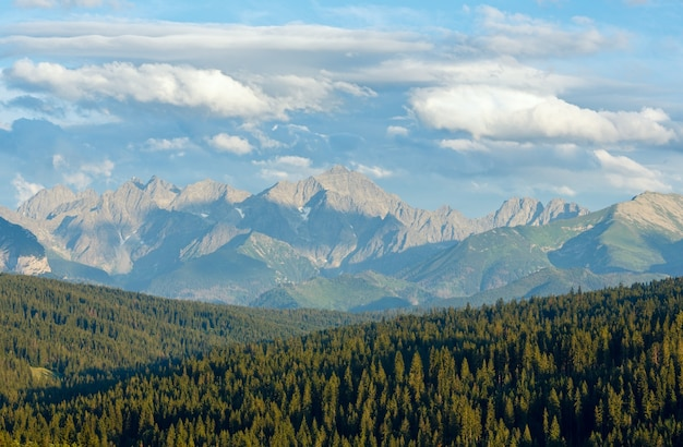 Summer evening mountain view with fir forest on hill and tatra range behind (poland)