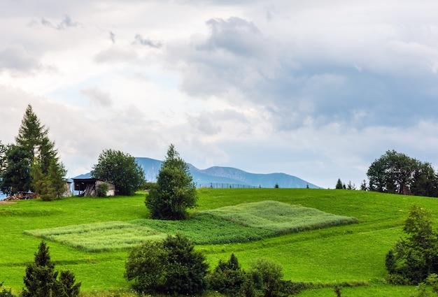 Summer evening mountain village outskirts (gliczarow gorny, poland)