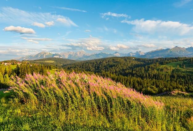 夏の夜の山間の村の郊外で、ピンクの花が前にあり、タトラが後ろにあります