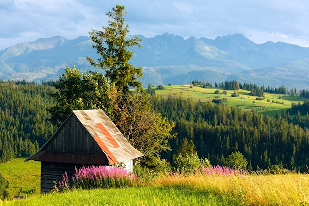 Summer evening mountain village outskirts with pink flowers and wooden shed in front and tatra range behind(gliczarow gorny, poland)