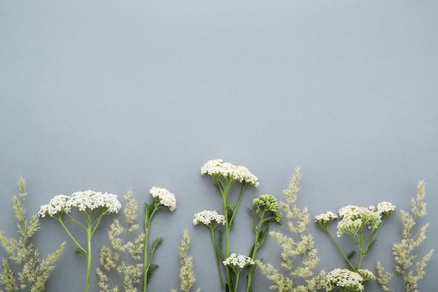 회색 표면에 여름 필드 잔디와 야생화 테두리
