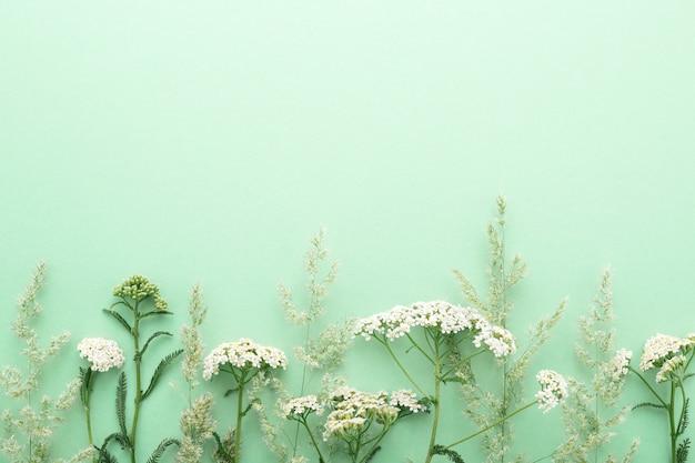 녹색 배경에 여름 필드 잔디와 야생화 테두리