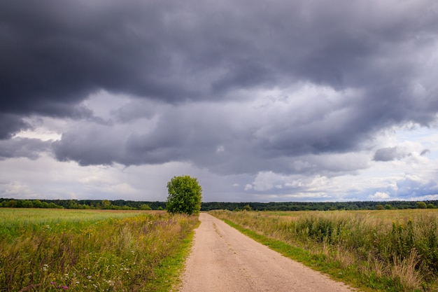 Summer field landscape. russian open spaces. before the storm. dark rainy sky.