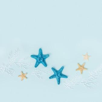 파란색 배경에 불가사리와 흰색 산호가 있는 여름 평면 여름 또는 해변 개념