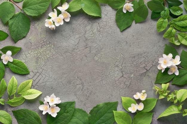 Летняя цветочная стена со свежими филадельфийскими цветами, также известная как макет-апельсин.