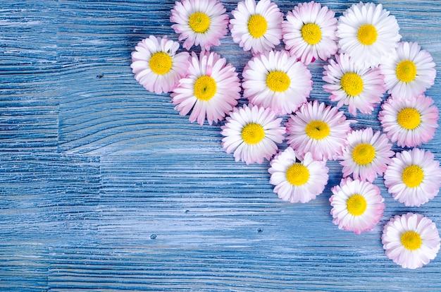Summer flowers on blue wood.