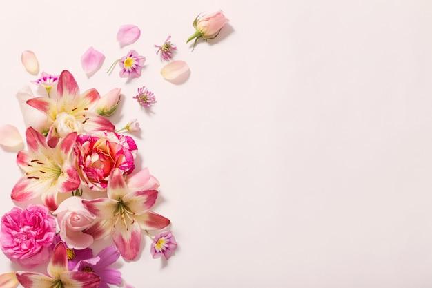 흰색 배경에 여름 꽃