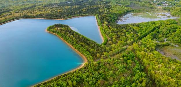 Летний лес озеро панорама с высоты птичьего полета между деревьями
