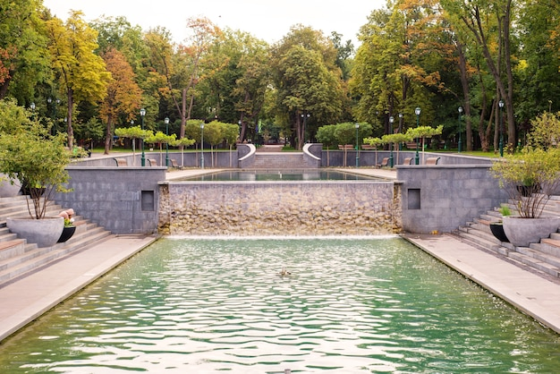 澄んだ水と自然の公園の夏の噴水