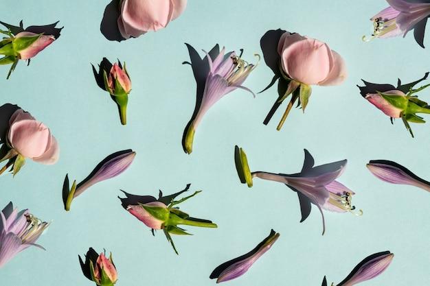 여름 fower 구성 재치 장미 꽃 봉 오리와 파란색 배경에 hosta 꽃. 하드 라이트와 꽃 패턴입니다.