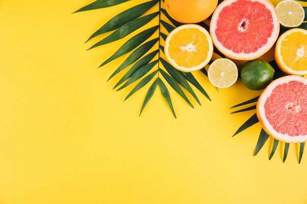 Summer fruits. tropical palm leaves, lime, grapefruit and orange on yellow background.