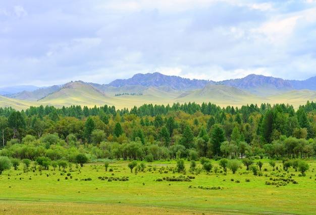 Летние зеленые поля деревья на фоне гор под пасмурным небом сибирь россия