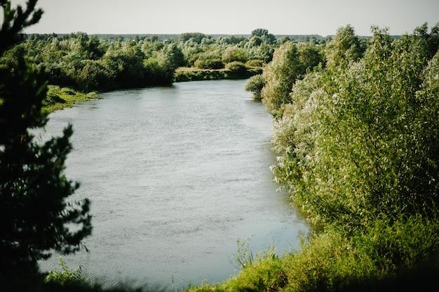 Летний зеленый лес с дикой природой и рекой, пейзаж, каскадное озеро с быстрым течением.