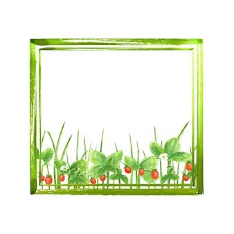 Summer green frame background