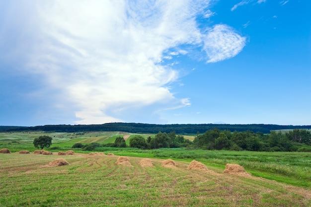 干し草の山と夏の緑の牧草地。