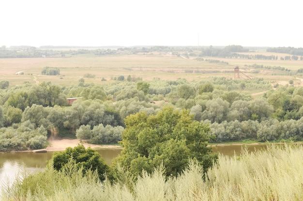 Летний зеленый природный русский сельский равнинный пейзаж с деревьями и полем с травой и рекой и небом с туманом на горизонте