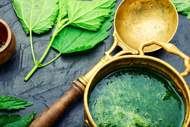 Summer green nettle soup. fresh nettle chowder. cream soup.