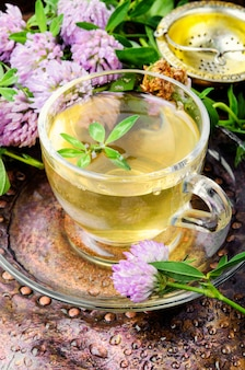 Summer herbal tea with clover